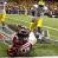 Danny Coale caught the ball's picture