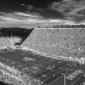 johnnyu19's picture