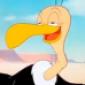 Beaky's picture
